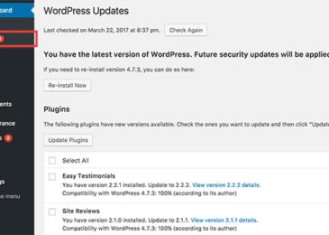 Cập nhật trang trong khu vực quản trị WordPress