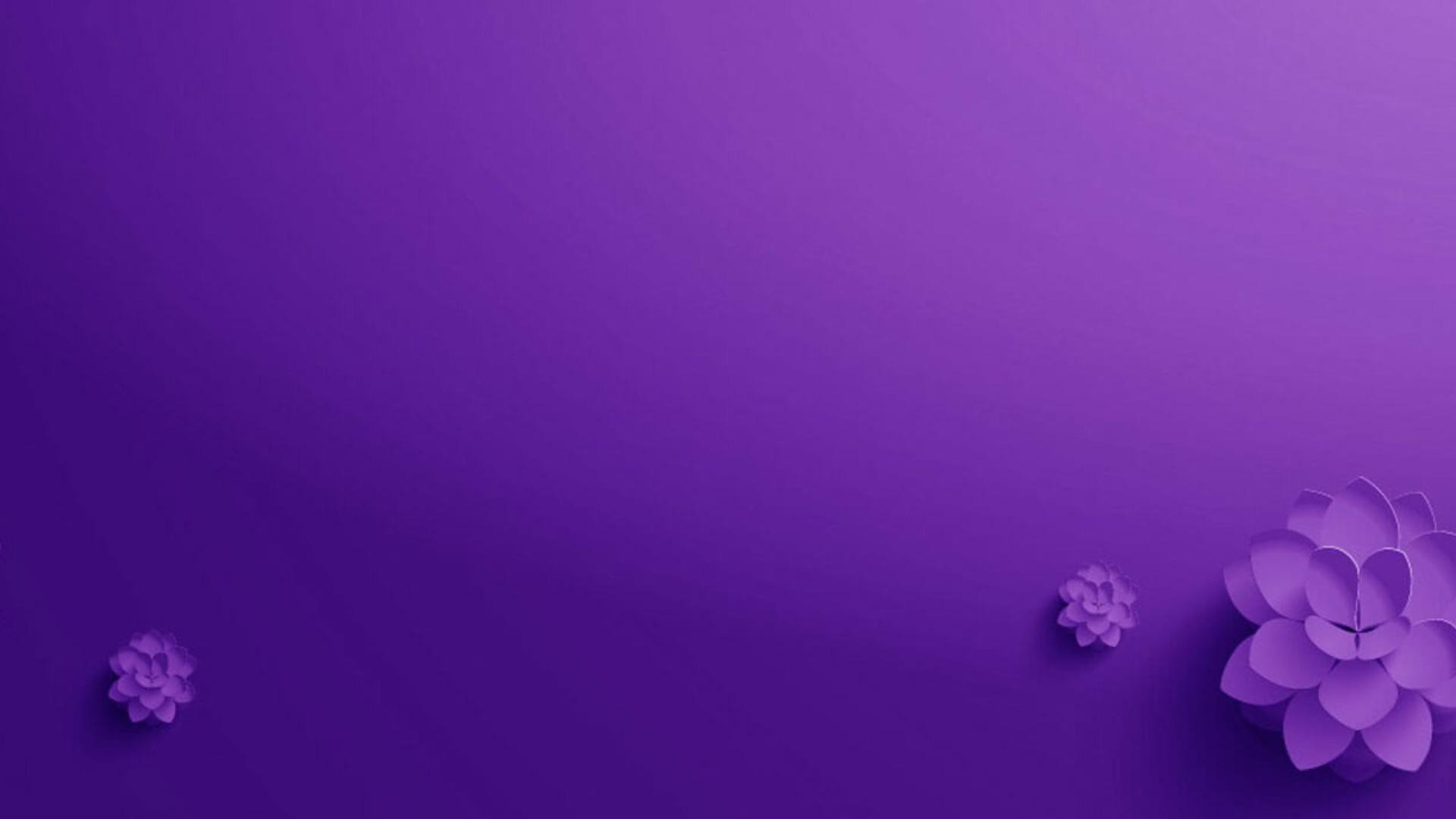 Hình ảnh background nền tím liên hoa
