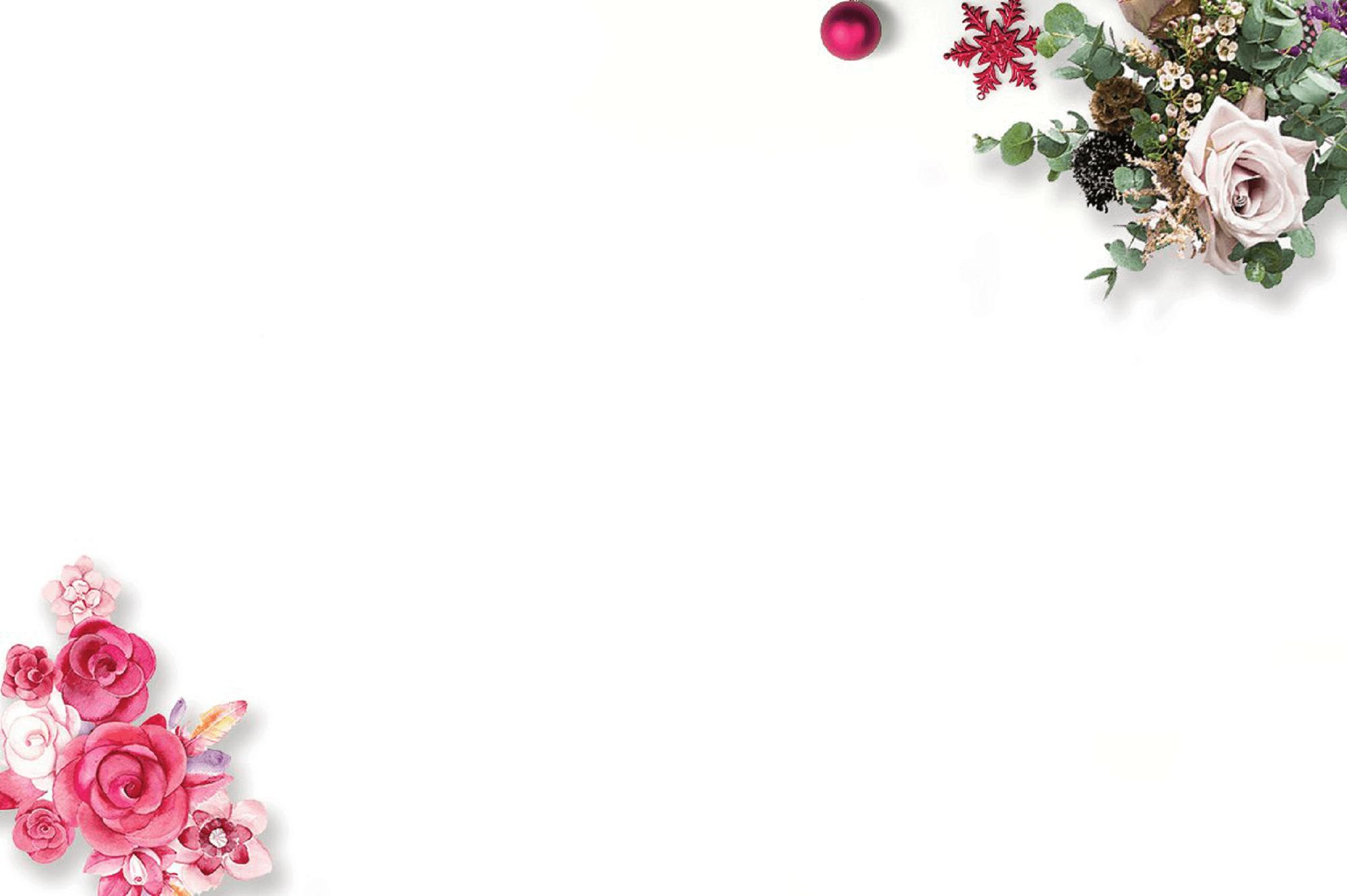 Hình ảnh background nền trắng bông hoa